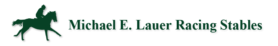 Michael E. Lauer Racing Stables logo